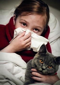 alergia agato