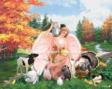 angel animals