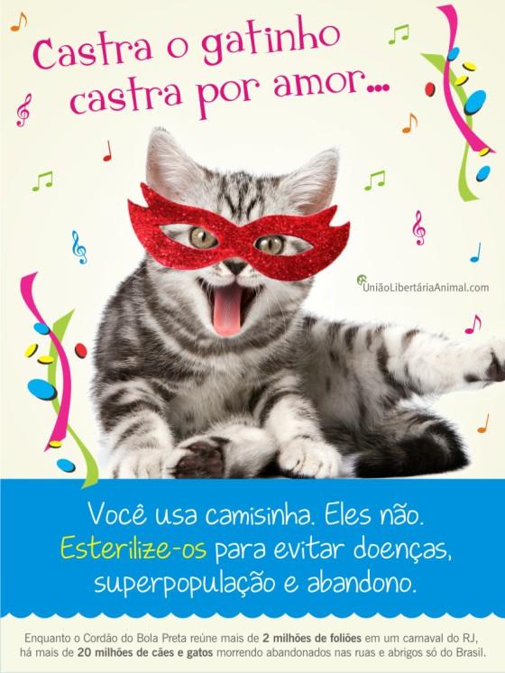 carnaval gato (1)