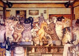 museu dos gatos