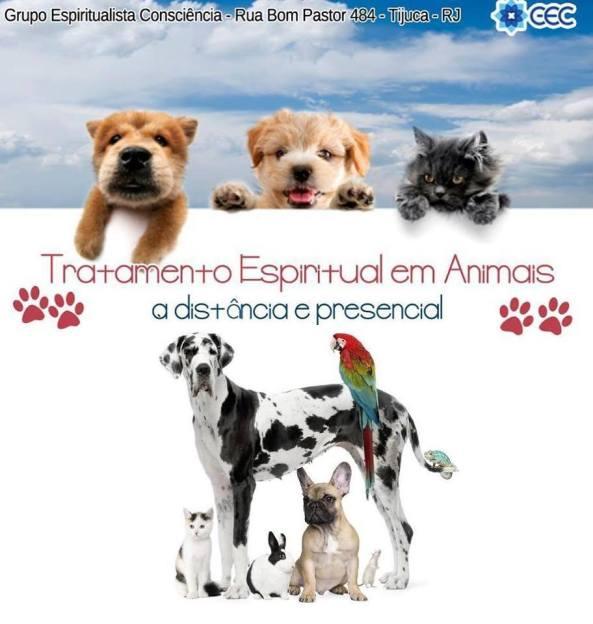 Tratamento espiritual animais