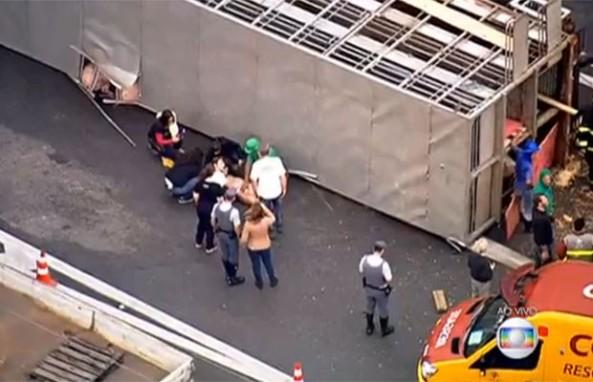 Equipe de resgate tentam socorrer porco que se feriu no tombamento da carreta (Foto: TV Globo/Reprodução)